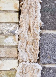 isolation mur creux problemes